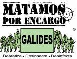 Galides