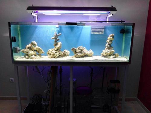 Fabricación de estructura para acuario