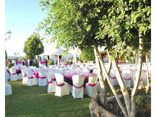 Banquete montado al aire libre