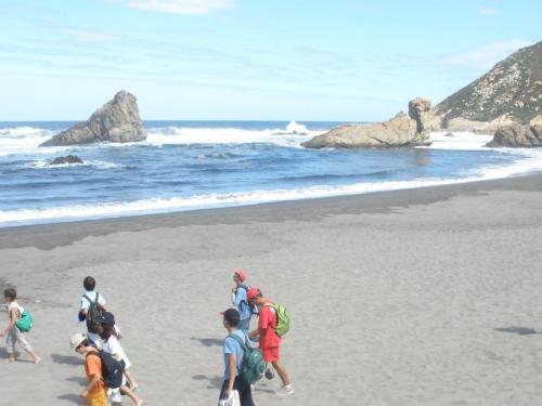 Excursión a la Playa