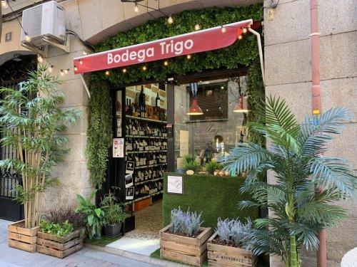 Decoración Tienda con planta artificial