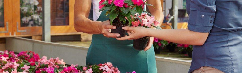 https://cdn.citiservi.es//business/bc/3b/9d/org_0bigstockwomanbuyingpinkflowers53584952.jpg