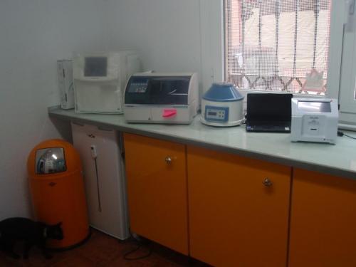 Analíticas completas ( bioquímica, hemmograma, coagulación, urianalisis....)