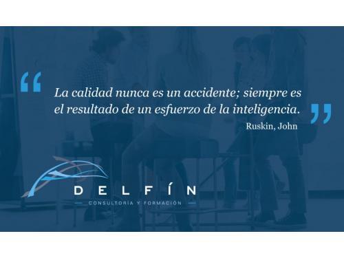 delfin consultoria y formación