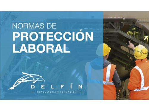 Protección laboral Delfín cyf